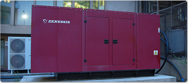 Generator. Alimentare electrica redundanta